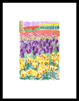 keukenhof 006 - 13 x 19 limited edition print