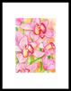 keukenhof 011 - 13 x 19 limited edition print