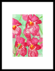 keukenhof 014 - 13 x 19 limited edition print